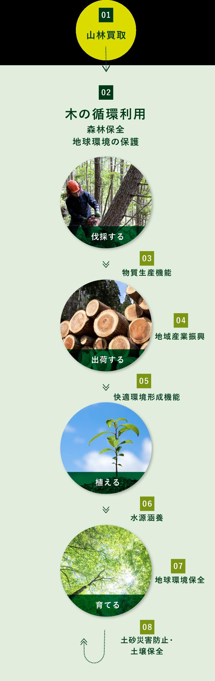 木の循環利用